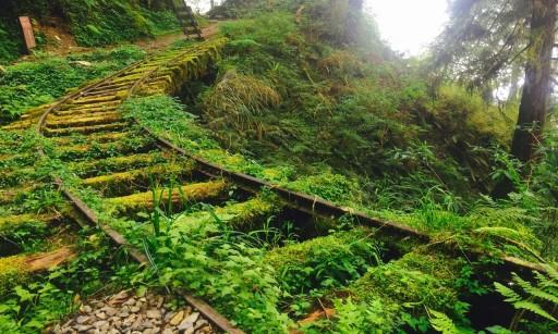 Qingtian Trail - Taipingshan