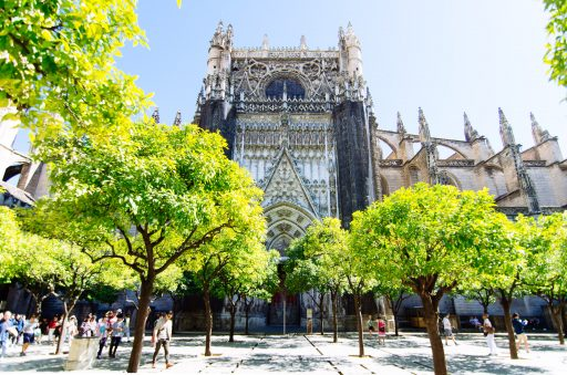 Orange Tree Courtyard - Seville Cathedral